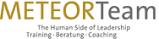 Logo MeteorTeam